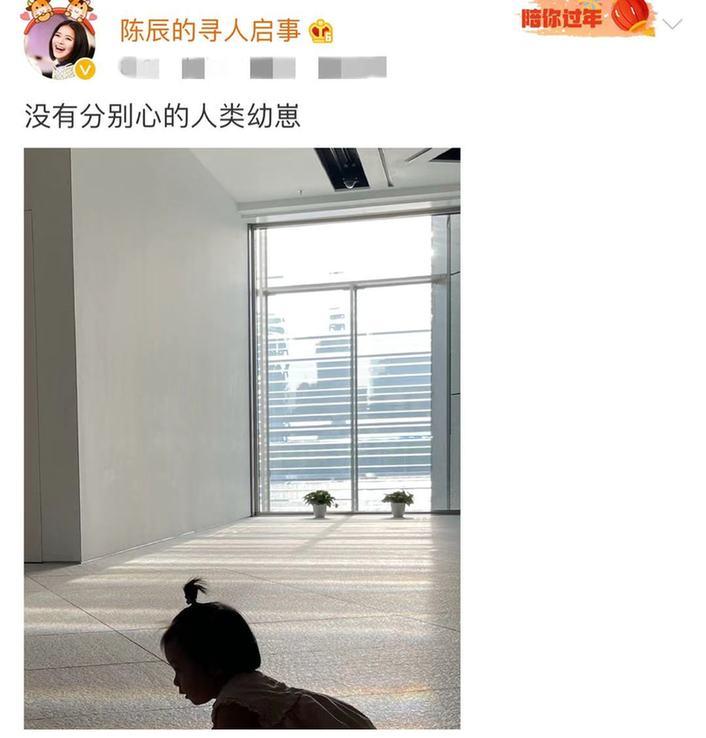 《【摩臣平台网】沪美女主持陈辰罕晒娃 女儿被夸颜值爆表像余笛》